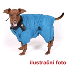 Enlargement